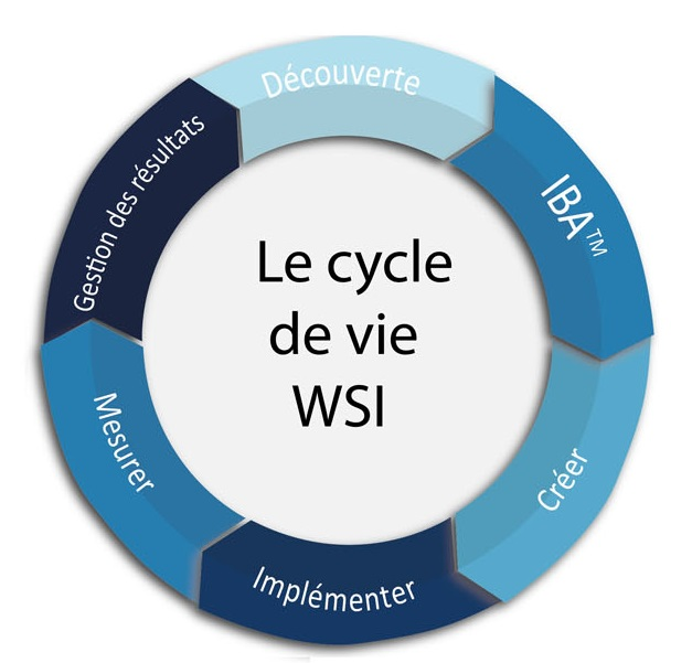 wsi-lifecycle